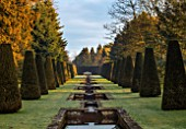 THENFORD GARDENS & ARBORETUM, NORTHAMPTONSHIRE: THE RILL IN FEBRUARY