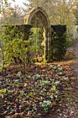 THENFORD GARDENS & ARBORETUM, NORTHAMPTONSHIRE: SNOWDROPS AND ARCH IN THE WOODLAND IN FEBRUARY