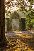 THENFORD GARDENS & ARBORETUM, NORTHAMPTONSHIRE: ARCH IN THE WOODLAND IN FEBRUARY