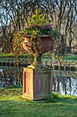 JOHN MASSEY GARDEN, ASHWOOD NURSERIES, WORCESTERSHIRE: CONTAINER BESIDE CANAL ON LAWN. HEDERA HELIX, IVY, PINUS MUGO CARSTENS WINTERGOLD, SKIMMIA JAPONICA RUBELLA