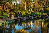 JOHN MASSEY GARDEN, ASHWOOD NURSERIES, WORCESTERSHIRE: MARCH, SPRING, WOODEN DECK, POOLS, PONDS, WATER, REFLECTIONS, REFLECTED, JETTY, CONTAINERS, DECKING, DECKED