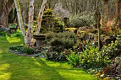 JOHN MASSEY GARDEN, ASHWOOD NURSERIES, WORCESTERSHIRE: LAWN, BORDER WITH HELLEBORES, SPRING, MARCH