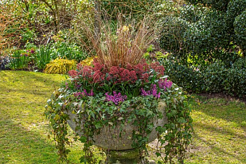 JOHN_MASSEY_GARDEN_ASHWOOD_NURSERIES_WORCESTERSHIRE_LAWN_AND_STONE_CONTAINER_PLANTED_WITH_HEDERA_HEL