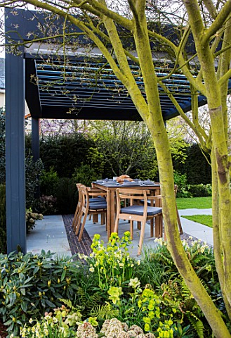 ASCOT_SPRING_GARDEN_SHOW_DESIGNER_CATHERINE_MACDONALD_PATIO_DINING_AREA_TABLE_CHAIRS_CANOPY_PERGOLA_