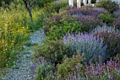 PORTO HELI, GREECE, DESIGNER THOMAS DOXIADIS: VILLA GARDEN. LAVENDER, SALVIAS, MEDITERRANEAN, WILD, DRY, GREEK, LANDSCAPE, TERRACE, WILDFLOWERS, PATHS, GRAVEL