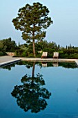 PORTO HELI, GREECE, DESIGNER THOMAS DOXIADIS: VILLA GARDEN. SWIMMING POOL, PINE TREE, SUN LOUNGERS, MEDITERRANEAN, WILD, DRY, GREEK, DAWN, REFLECTIONS, REFLECTED