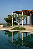 PORTO HELI, GREECE, DESIGNER THOMAS DOXIADIS: VILLA GARDEN. SWIMMING POOL, OLIVE TREE, MEDITERRANEAN, WILD, DRY, GREEK, DAWN, REFLECTIONS, REFLECTED, COLUMNS, ROSEMARY