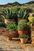 ANTIPAROS, GREECE, DESIGNER THOMAS DOXIADIS: PATIO, CACTUS GROWING IN TERRACOTTA CONTAINERS, SUCCULENTS, SPIKEY