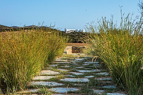 ANTIPAROS_GREECE_DESIGNER_THOMAS_DOXIADIS_STONE_PATH_WITH_GRASSES_VILLA_GARDEN_GREEK_MEDITERRANEAN_D