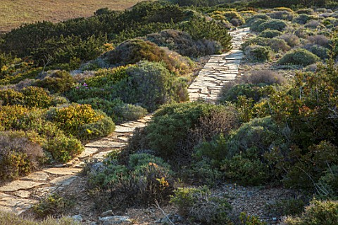 ANTIPAROS_GREECE_DESIGNER_THOMAS_DOXIADISPATH_DOWN_TO_SEA_SURROUNDED_BY_SHRUBS_DRY_GARDEN_SPRING_MED