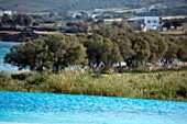 ANTIPAROS, GREECE, DESIGNER THOMAS DOXIADIS: SWIMMING POOL AND OLIVE TREES BESIDE THE SEA