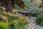 ANTIPAROS, GREECE, DESIGNER THOMAS DOXIADIS:PATH, GRASSES, WOODEN BENCH AND JUNIPER TREE