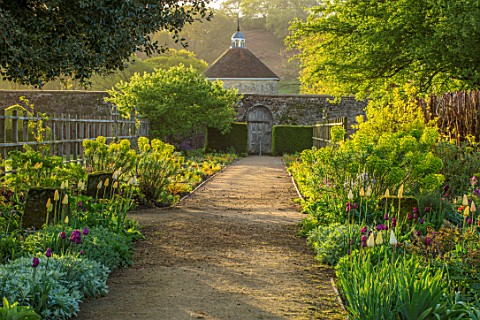 PARHAM_HOUSE_AND_GARDENS_SUSSEX_GRAVEL_PATH_MAIN_DOUBLE_BORDER__TULIPS_TULIPA_FIRST_PROUD_TULIPA_REC
