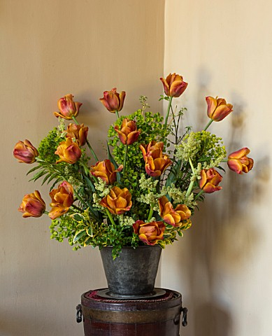 PARHAM_HOUSE_AND_GARDENS_SUSSEX_FLOWER_ARRANGEMENT_WITH_TULIPA_BROWN_SUGAR_RHUBARB_FLOWERS_EUPHORBIA