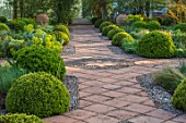 MITTON MANOR, STAFFORDSHIRE: FORMAL BOX TOPIARY GARDEN, SPRING, PATH, CLIPPED, BOX, BUXUS, HEDGES, MOUNDS, HEDGING, GREEN, EVERGREENS, EUPHORBIAS, COUNTRY, ENGLISH, CLASSIC