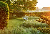 THE MANOR HOUSE, STEVINGTON, BEDFORDSHIRE: EARLY MORNING VIEW OF WHITE BENCH, SEAT, BESIDE HEDGE, HEDGING
