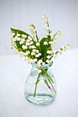 AVONDALE NURSERIES, COVENTRY: LILY-OF-THE-VALLEY - CONVALLARIA MAJALIS, IN GLASS BOTTLE, VASE, PETALS, FLOWERS, BULBS, LILY, OF, THE, VALLEY, SPRING, WHITE, STILL LIFE