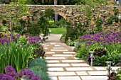 THE MOONGATE GARDEN, SUSSEX: PATH, BORDERS IN SPRING OF ALLIUM FIRMAMENT WITH PURBECK STONE WALL, MOONGATE, BOUNDARY, BOUNDARIES, BULBS, PURPLE, FLOWERING. SPRING