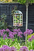 THE MOONGATE GARDEN, SUSSEX: ALLIUM FIRMAMENT, BLACK PAINTED FENCE, MIRRORS, BOUNDARY, BOUNDARIES, BULBS, REFLECTIONS, REFLECTED, SPRING