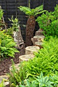 THE MOONGATE GARDEN, SUSSEX: BLACK FENCE, FENCING, BOUNDARY, BOUNDARIES,  GREEN FERNS, WOODEN STEPPING STONES, DICKSONIA ANTARCTICA, SHADY, WOODLAND, SHADE