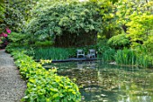 CHILWORTH MANOR, SURREY: ORIGINAL MONASTIC STEWPOND WITH GUNNERA MANICATA AND DECKING AREA WITH WOODEN SEATS, SPRING