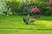 CHILWORTH MANOR, SUSSEX: LAWN WITH JAPANESE MAPLE AND SCULPTURE