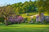 CHILWORTH MANOR, SUSSEX: LAWN, EASTERN REDBUD - CERCIS CANADENSIS, WALLED GARDEN WITH CLIMBING PURPLE WISTERIA, BORROWED LANDSCAPE