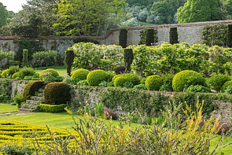 CHILWORTH_MANOR_SURREY_THE_WALLED_GARDEN_STEPS_WALLS_CLIPPED_TOPIARY_BOX_BUXUS_GATE_BORROWED_LANDSCA