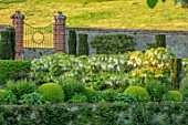 CHILWORTH MANOR, SUSSEX: THE WALLED GARDEN. WALLS, CLIPPED TOPIARY BOX, BUXUS, GATE, BORROWED LANDSCAPE, WHITE WISTERIA