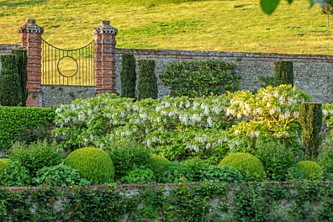 CHILWORTH_MANOR_SURREY_THE_WALLED_GARDEN_WALLS_CLIPPED_TOPIARY_BOX_BUXUS_GATE_BORROWED_LANDSCAPE_WHI