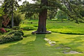 CHILWORTH MANOR, SUSSEX: LAWN WITH STONE PATH TO TREE SEAT AROUND CEDAR OF LEBANON. SPRING