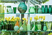 CLAUS DALBY GARDEN, DENMARK: GREENHOUSE, STUDIO - GREEN CONTAINERS FOR FLOWER ARRANGING ON SHELVES