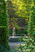 CLAUS DALBY GARDEN, DENMARK: SQUARE FOUNTAIN AT END OF GARDEN WITH PLANTING OF TULIPS - TULIPA BARCELONA AND QUEEN OF NIGHT. WOODLAND, SHADE, SHADY, WATER, FEATURE