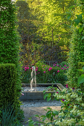 CLAUS_DALBY_GARDEN_DENMARK_SQUARE_FOUNTAIN_AT_END_OF_GARDEN_WITH_PLANTING_OF_TULIPS__TULIPA_BARCELON