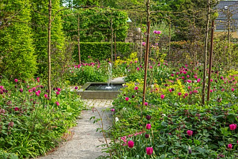 CLAUS_DALBY_GARDEN_DENMARK_PATH_SQUARE_FOUNTAIN_AT_END_OF_GARDEN_WITH_PLANTING_OF_TULIPS__TULIPA_BAR