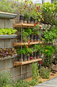 CHELSEA FLOWER SHOW 2018: THE LEMON TREE TRUST - DESIGNER TOM MASSEY: CONCRETE WALLS, CONTAINERS OF LETTUCE, MARIGOLDS. HERBS, SUSTAINABLE, RECYCLED, RECYCLING, FOOD, KITCHEN