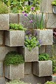 CHELSEA FLOWER SHOW 2018: THE LEMON TREE TRUST - DESIGNER TOM MASSEY: CONCRETE WALLS,PLANTED WITH CHIVES AND FLOWERS, RECYCLING, RECYCLED, RE-CYCLED, CONTAINERS