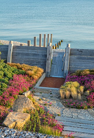 SEASIDE_GARDEN_DESIGNED_BY_ANTHONY_PAUL_OAK_FENCES__DRAWBRIDGE_THRIFT_ARMERIA_MARITIMA_PINK_FLOWERS_