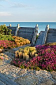 SEASIDE GARDEN DESIGNED BY ANTHONY PAUL: OAK FENCES,  DRAWBRIDGE, THRIFT, ARMERIA MARITIMA, PINK, FLOWERS, COASTAL, GARDENS, ERIGERON SEABREEZE, CAREX TESTACEA, STIPA TENUISSIMA