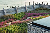SEASIDE GARDEN DESIGNED BY ANTHONY PAUL: OAK FENCES,  DRAWBRIDGE, THRIFT, ARMERIA MARITIMA, PINK, FLOWERS, COASTAL, GARDENS, ERIGERON SEABREEZE, INFINITY SWIMMING POOL