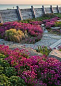 SEASIDE GARDEN DESIGNED BY ANTHONY PAUL: OAK FENCES,  THRIFT, ARMERIA MARITIMA, PINK, FLOWERS, COASTAL, GARDENS, ERIGERON SEABREEZE, CAREX TESTACEA, STIPA TENUISSIMA