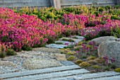 SEASIDE GARDEN DESIGNED BY ANTHONY PAUL: OAK FENCES, THRIFT, ARMERIA MARITIMA, PINK, FLOWERS, COASTAL, GARDENS, STONE PATH. OAK PATH