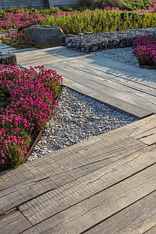 SEASIDE_GARDEN_DESIGNED_BY_ANTHONY_PAUL_OAK_SLEEPERS_FOR_FLOOR_THRIFT_ARMERIA_MARITIMA_PINK_FLOWERS_