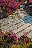 SEASIDE GARDEN DESIGNED BY ANTHONY PAUL: PATHS, OAK SLEEPERS, ROCKS, THRIFT, ARMERIA MARITIMA, PINK, FLOWERS, COASTAL GARDENS