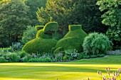 ABLINGTON MANOR, GLOUCESTERSHIRE: LAWN AND CLIPPED TOPIARY YEW HEDGES, HEDGING, SUMMER, ROMANTIC, ENGLISH, COUNTRY, GARDEN