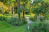 ASTHALL MANOR, OXFORDSHIRE: PATH AND BORDER WITH FOXGLOVES, TRACHYCARPUS FORTUNEI