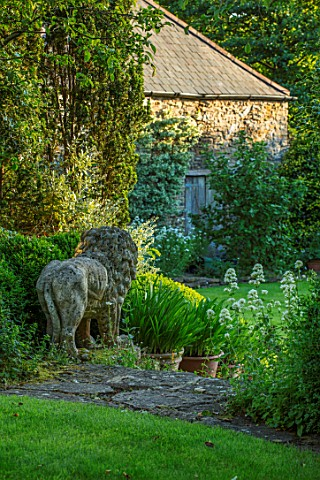 HARVARD_FARM_DORSET_LION_STATUE_STEPS_CENTRANTHUS_AND_AGAPANTHUS_IN_TERRACOTTA_CONTAINERS_ON_GRANARY