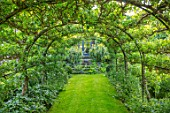 HARVARD FARM, DORSET: LAWN, APPLE TUNNEL, ARCH, PERGOLA, GREEN, GARDEN, SUMMER, ENGLISH