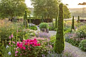 WORMSLEY, BUCKINGHAMSHIRE: THE OPERA GARDEN, DESIGNER HANNAH GARDNER: THE GARDEN IN MORNING LIGHT. SUNRISE, SUMMER. STIPA GIGANTEA, PEONIES, PHLOMIS, IRIS, ASTRANTIA