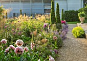 WORMSLEY, BUCKINGHAMSHIRE: THE OPERA GARDEN, DESIGNER HANNAH GARDNER: PATH, YEWS, BORDERS, FOXGLOVES, STIPA GIGANTEA. ENGLISH, COUNTRY, GARDEN, SUMMER